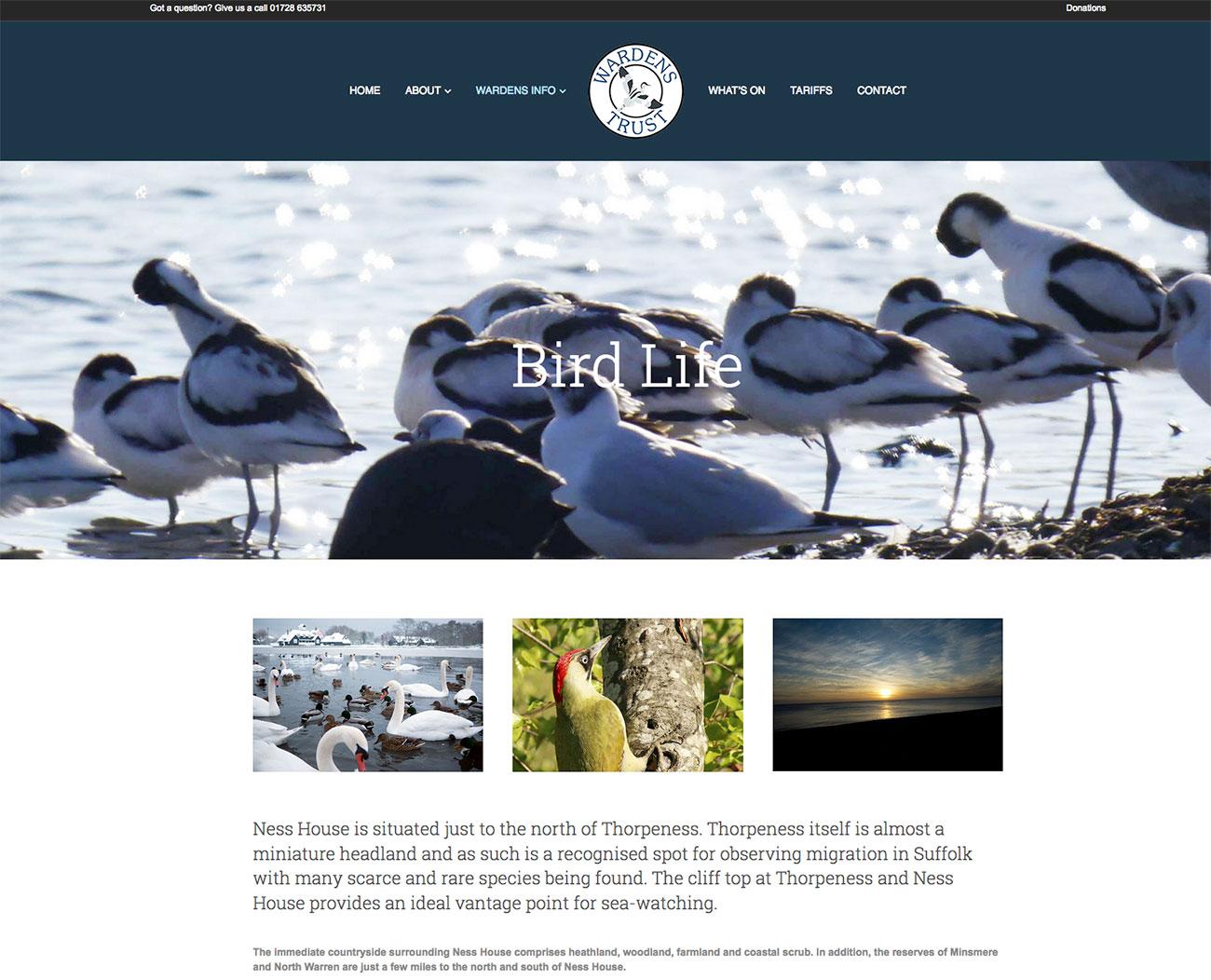 Web Design Ipswich Colchester Web Designers Charity Website