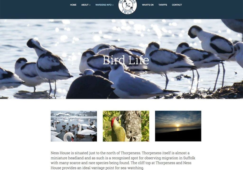 Web-Design-Ipswich-Colchester-Web-Designers-Charity-website